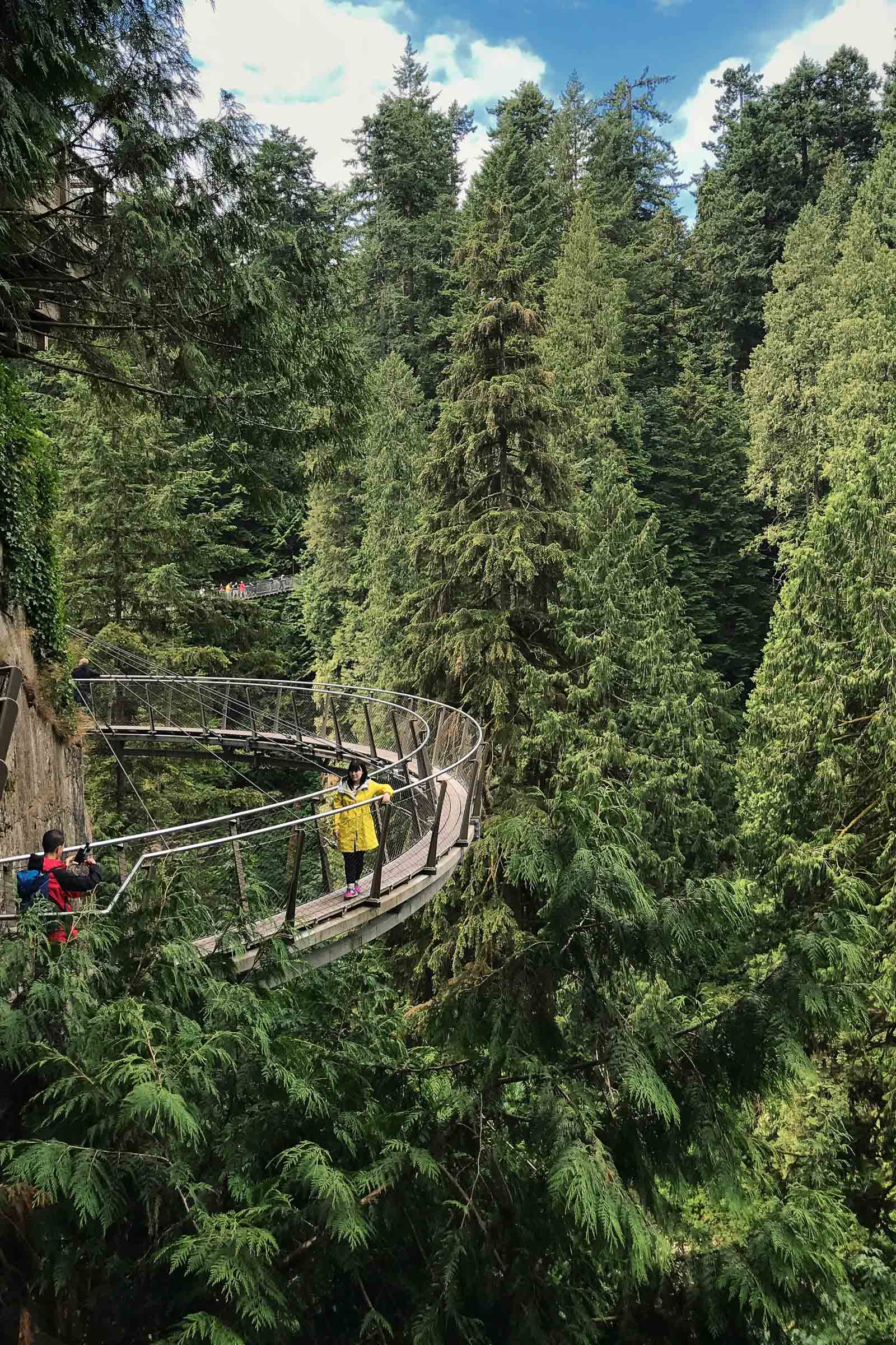 Tourists pause on a forest walking bridge in Vancouver-BC-Travel